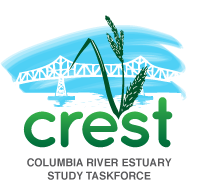 Columbia River Estuary Study Taskforce